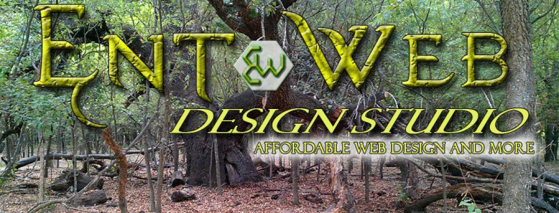 Ent Web DS